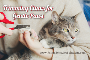 Trimming Claws Gentle Paws