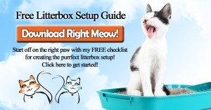 Litterbox Setup Checklist