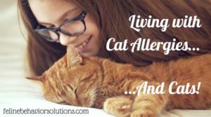 Cat Allergies